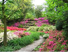 Il giardinaggio fai da te il fai da te for Cose da giardinaggio